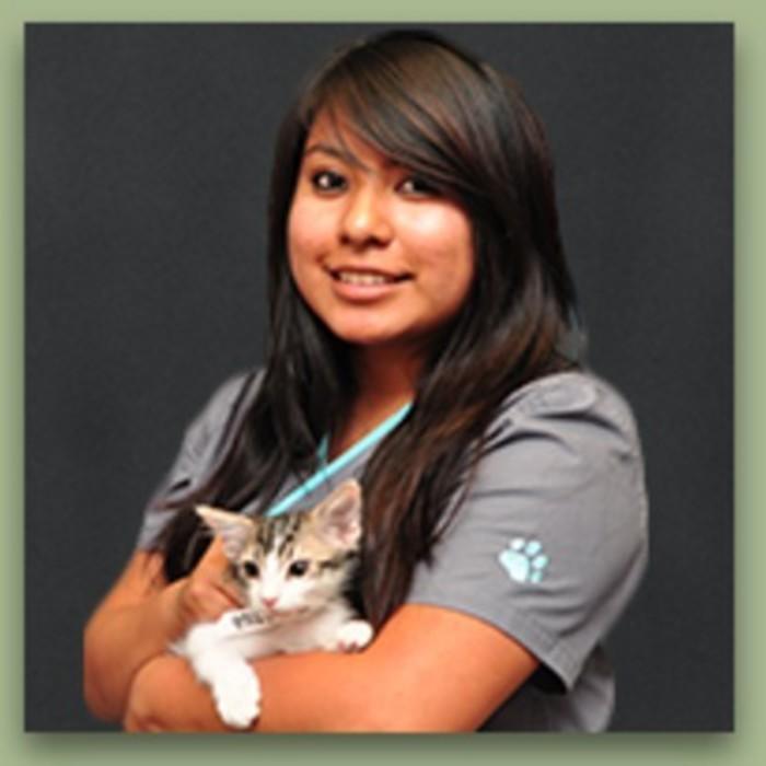 Gladys<br />Veterinary Technician  photo